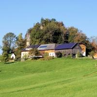 Ferienhof Brückler - Laussa