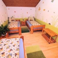 Ferienhof Inselsbach - Ferienwohnung Finkenkobel