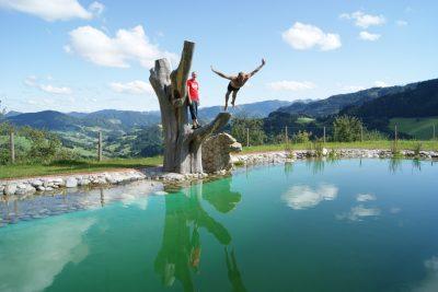 Schwimmteich - Biohof Brueckler, Laussa