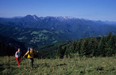 Gamsstein - Großraming - Nationalpark Kalkalpen Region Ennstal